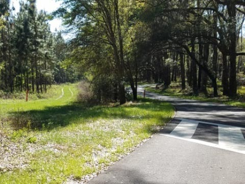 Withlacoochee State Trail, Florida top 10 bike trail