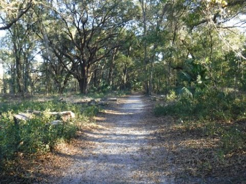 Payne's Prairie eco-biking, Chacala Trails