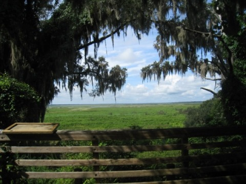 Florida top 10 bike trails, Gainesville-Hawthorne State Trail
